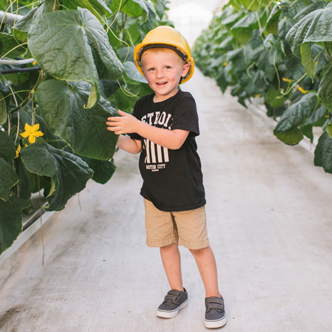 Child in Cucumber Greenhouse